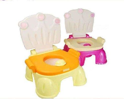 Toilet mould 002