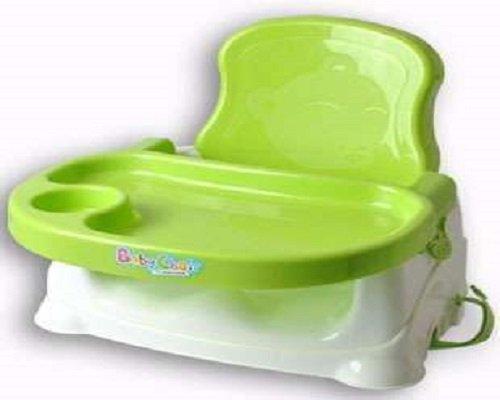 Toilet mould 007